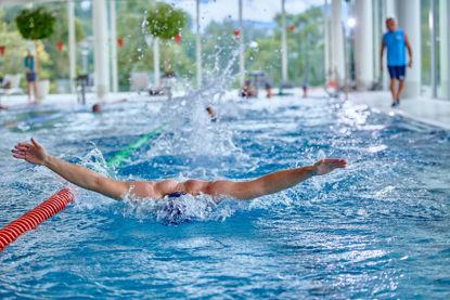 Bild von Schwimmtraining Delfin